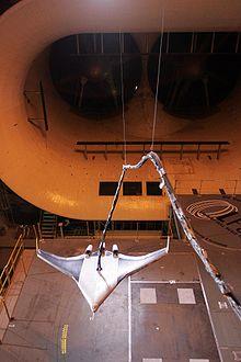 Esperimentos: tunel del viento