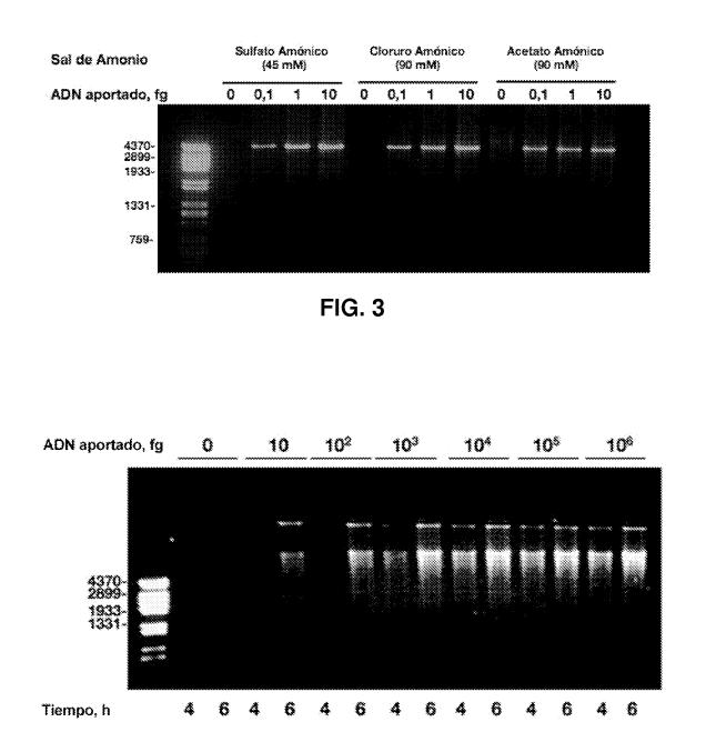 CSIC patenta replicacion del ADN