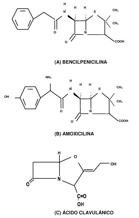 Experimentos - penicilina