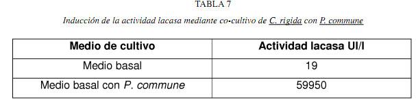 EXPERIMENTOS - BIOTECNOLOGIA CSIC